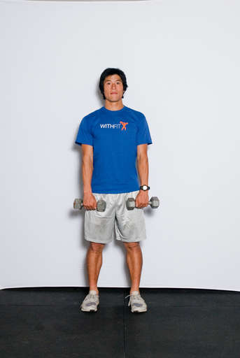 Stand, hold dumbbells with your arms straight down in front of you, palms facing legs.